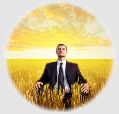 Jiaogulan Anti-Anxiety and Stress Relief