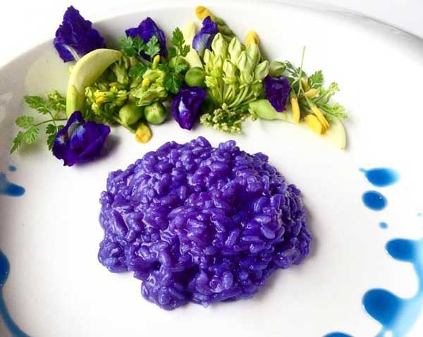 In Southeast Asia Erfly Pea Is Used As A Natural Food Coloring Traditional Thai Cooking Flowers Are Squeezed For Their Blue Extract